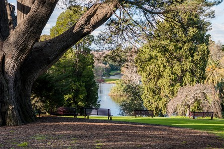 The Royal botanic garden, Melbourne, Australia.