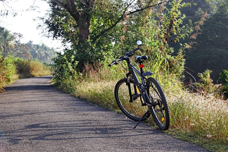 Bicycle parked on a winter morning while riding along a tranquil countryside road in Kerala, India