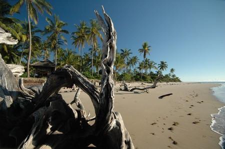 Simply Saadani beach camp  | © Julia D'Orazio
