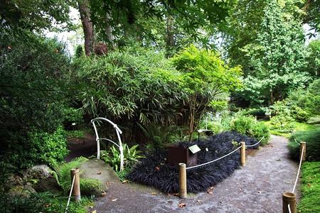 Jardín Botánico Atlántico, Gijon