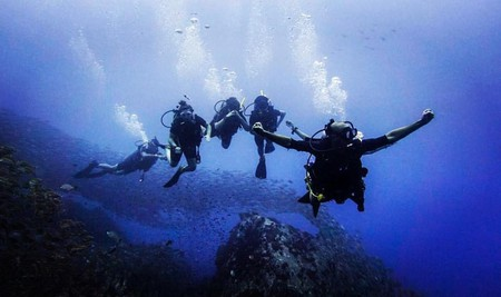 Koh Tao is one of the most popular islands in the world to scuba dive