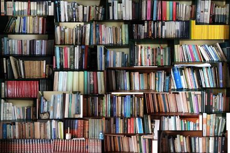 Books, loads of them