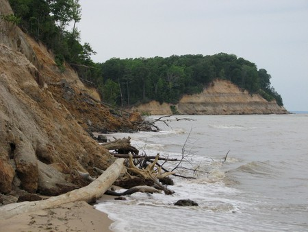 Calvert Cliffs State Park, Maryland