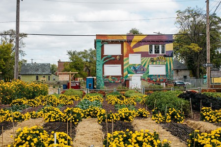 The Michigan Urban Farming Initiative
