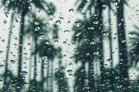 Don't let the rain ruin your day
