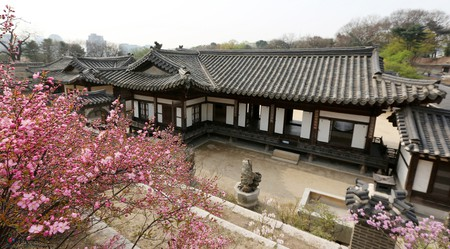 Changdeokgung in spring