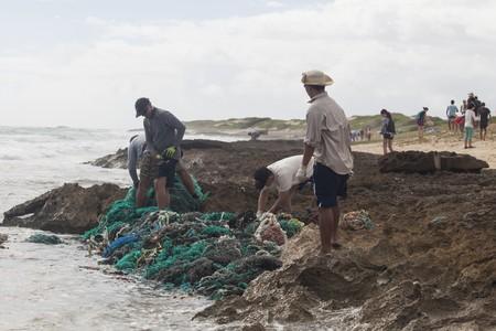 Kahuku beach cleanup