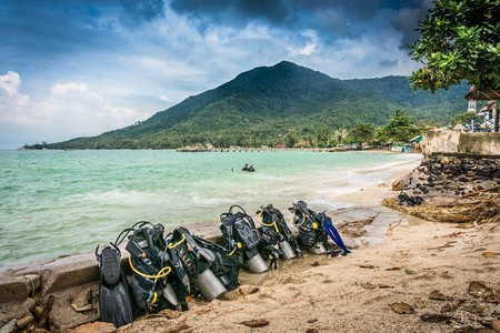 Koh Phangan's location makes it a prime jumping-off point for exploring the Gulf's most incredible marine life