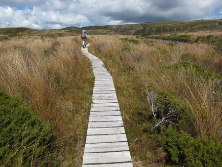 A hiker on the Heaphy Track