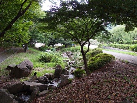 Eerie and peaceful Toyama Park