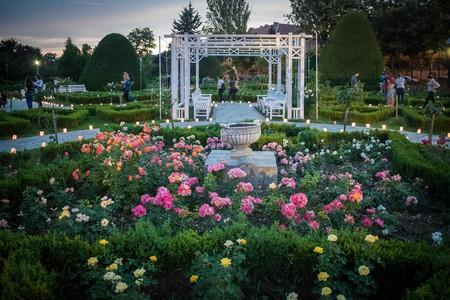 The Roses Park in Timișoara, Romania