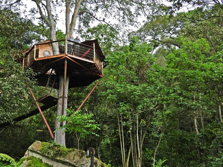 Colombian treehouse living: truly uplifting