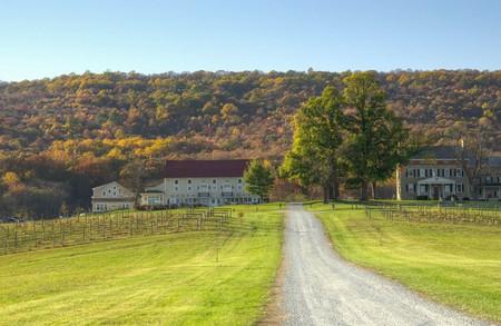 A Maryland winery