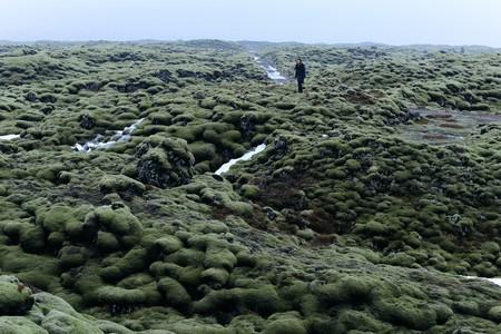 Don't miss Eldhraun Lava Field on a trip to Iceland | Jennifer Cauli / © Culture Trip