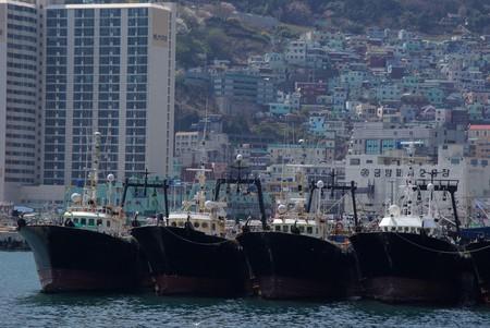 Fishing boats in Busan Harbour, South Korea