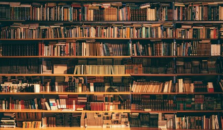 Book shelves | © Alfons Morales / Unsplash