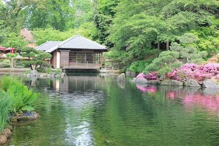 Japanese Gardens, Kaiserslautern