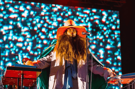 Erykah Badu headlined Field Day