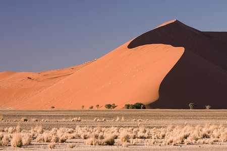 Dune 45 in Sossusvlei region in the Namib-Naukluft National Park, Namib Desert, Namibia