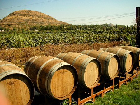 India now has some excellent wineries like the Chateau Indage Vineyards in Pune