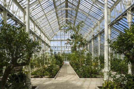 Temperate House is the largest upgrade ever at Kew