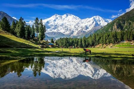 Fairy Meadows, Pakistan