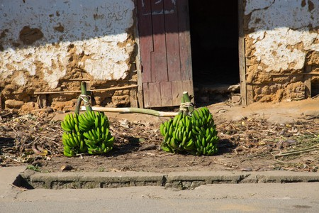 Bunches of bananas for sale at the side of the road, Ranomafana, Madagascar