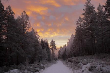 Nordmarka, Norway