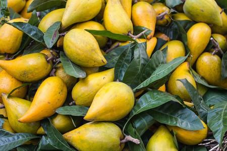 Lucuma looks similar to mangos