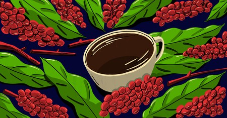 Discover the history behind your morning cup of coffee