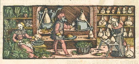 Women and men take part in distilling medicines c.1550