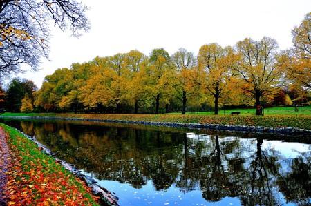 Grab a coffee and take a beautiful Sunday walk around Djurgården.