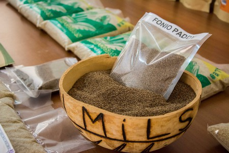 Processed fonio, the new kid on the superfood block