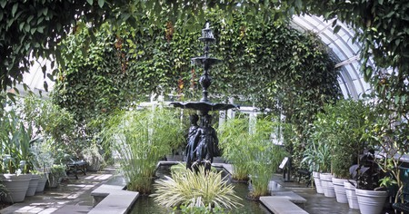 The New York Botanic Garden Conservatory in the Bronx is brimming with beautiful greenery