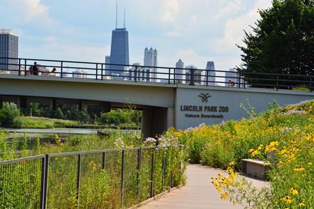 Lincoln Park Zoo Boardwalk, Chicago, IL, USA