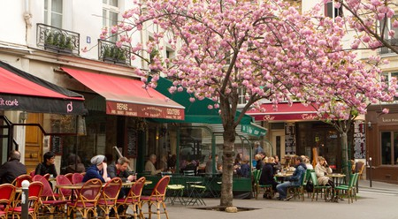 The gastronomic excellence in Paris is unrivalled