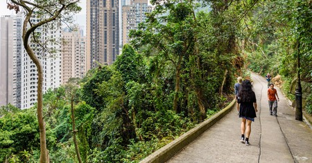 Old Peak Road is now a walking path between the Mid-Levels and Victoria Peak