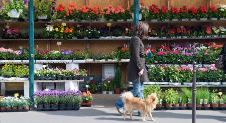Visiting the markets in Paris is a perfect weekend activity