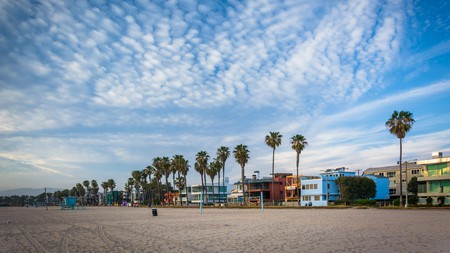 You can't visit Los Angeles without checking out Venice Beach