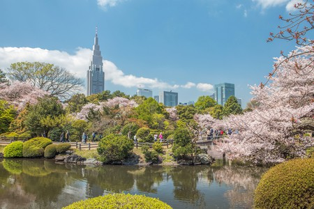 Set aside a few hours to explore nature at Shinjuku Gyoen