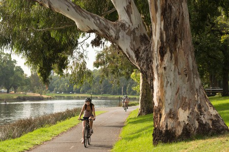 Cyclists Along the Banks of the Yarra in Melbourne, Australia.