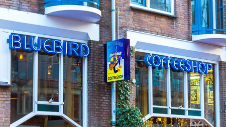 The Bluebird Coffeeshop is a laid-back place to chill out