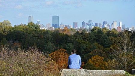 The Arnold Arboretum in Jamaica Plain offers sweeping vistas of Boston