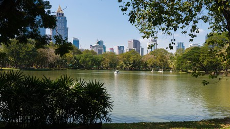 Lumpini Park is a green oasis in the heart of the capital