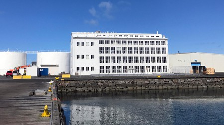 The artist-led Kling and Bang has fostered Reykjavik's creative scene