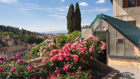 The Rose Garden is one of Florence's historical gardens woven into the fabric of the city