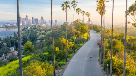 This palm-tree-lined street might be the most Instagrammable street in Downtown Los Angeles