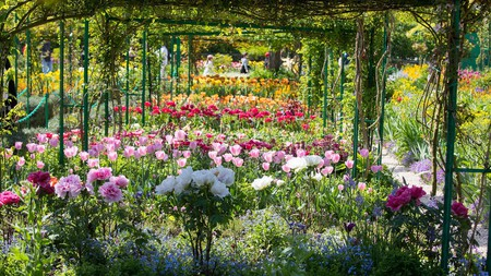 """Floral recreation of Claude Monet's """"Les Pivoines"""" in The Giverny Gardens"""