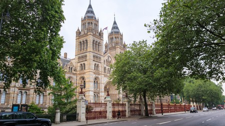London's Natural History Museum is housed in a magnificent Romanesque building in South Kensington