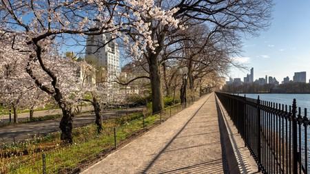 Central Park is a must-do even on a short trip to New York City